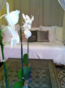 old-san-juan-hotel-casablanca