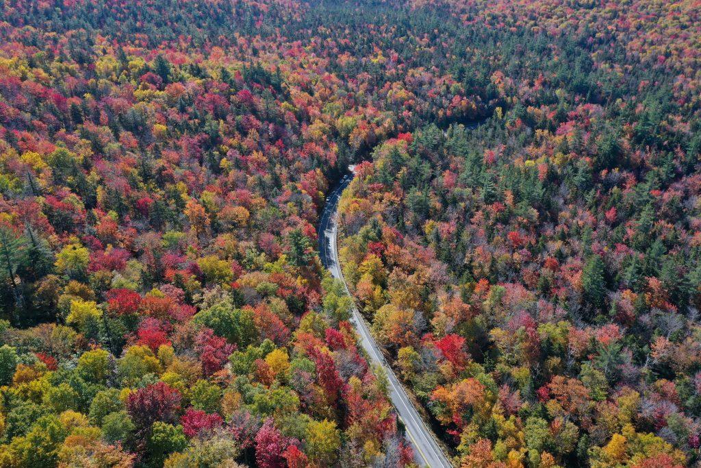 fall foliage drive skymed international
