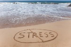 Stress-Free Vacation Planning (PRNewsFoto/CLIA)