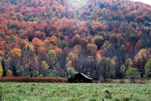 RV Fall Foliage Adventures