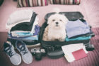 how to pack a carryon, travel tips, how to pack, packing tips